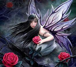 faerie-rose