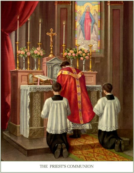picture mass 15